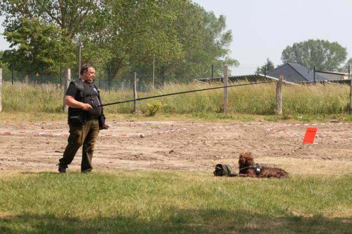 Verein der Hundeffreunde Loitz 050 (1280x853)